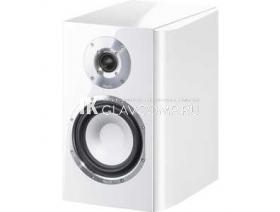Ремонт акустической системы Magnat Quantum 1003 S