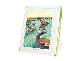 Ремонт электронной книги Aiptek StoryBook inColor