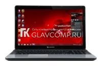 Ремонт ноутбука Packard Bell EasyNote TE11 AMD