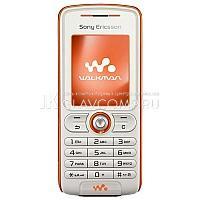 Ремонт телефона Sony Ericsson W200i